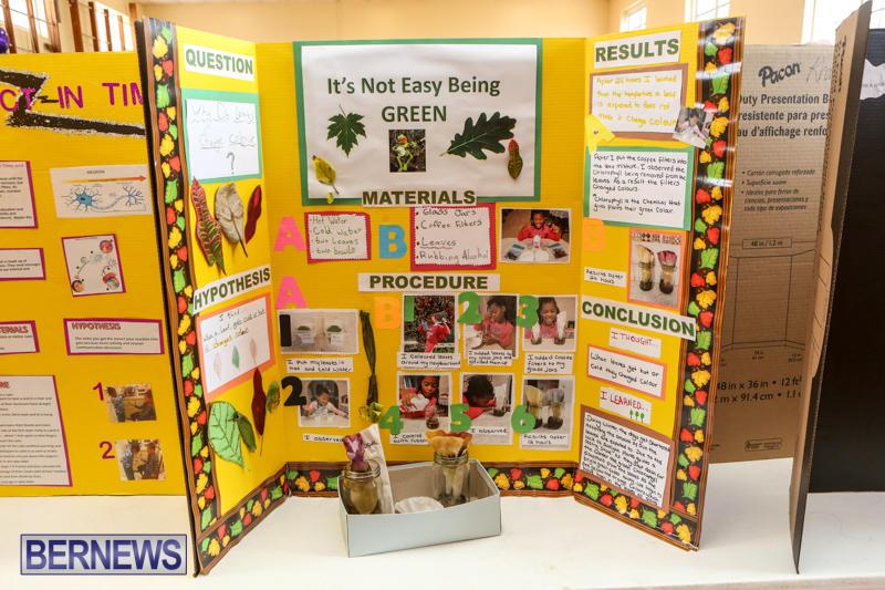 Purvis-Primary-Science-Fair-Bermuda-February-24-2016-57