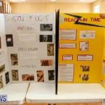 Purvis Primary Science Fair Bermuda, February 24 2016-58