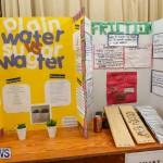 Purvis Primary Science Fair Bermuda, February 24 2016-59