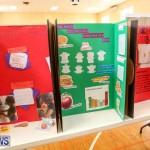 Purvis Primary Science Fair Bermuda, February 24 2016-63