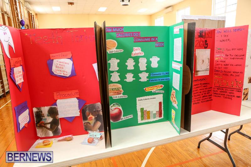 Purvis-Primary-Science-Fair-Bermuda-February-24-2016-63