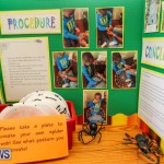 Purvis Primary Science Fair Bermuda, February 24 2016-66