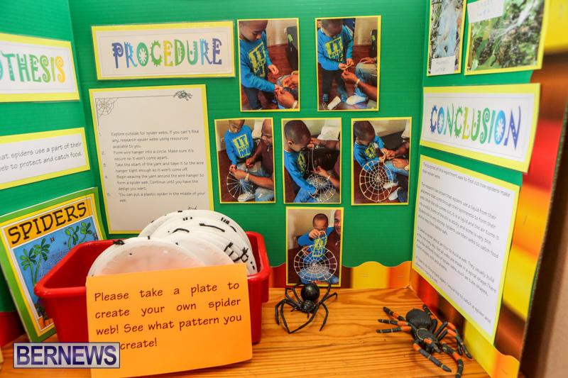 Purvis-Primary-Science-Fair-Bermuda-February-24-2016-66