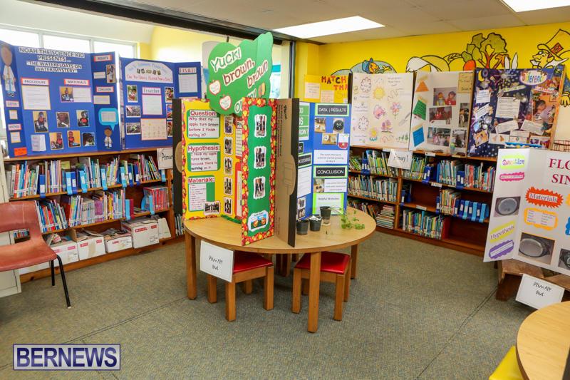 Purvis-Primary-Science-Fair-Bermuda-February-24-2016-7