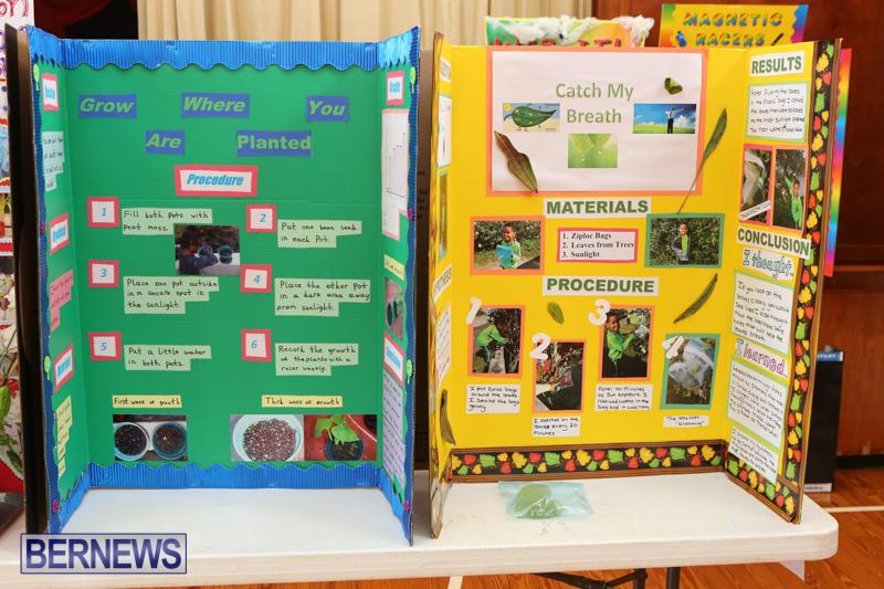 Purvis-Primary-Science-Fair-Bermuda-February-24-2016-72