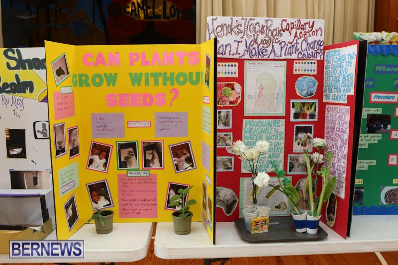 Purvis-Primary-Science-Fair-Bermuda-February-24-2016-73