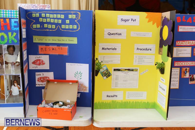 Purvis-Primary-Science-Fair-Bermuda-February-24-2016-75