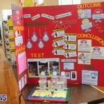 Purvis Primary Science Fair Bermuda, February 24 2016-82