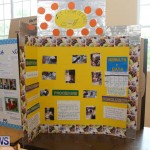 Purvis Primary Science Fair Bermuda, February 24 2016-84
