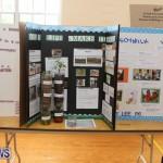 Purvis Primary Science Fair Bermuda, February 24 2016-85