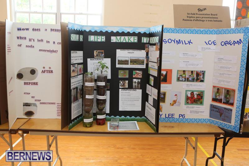 Purvis-Primary-Science-Fair-Bermuda-February-24-2016-85