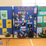 Purvis Primary Science Fair Bermuda, February 24 2016-87
