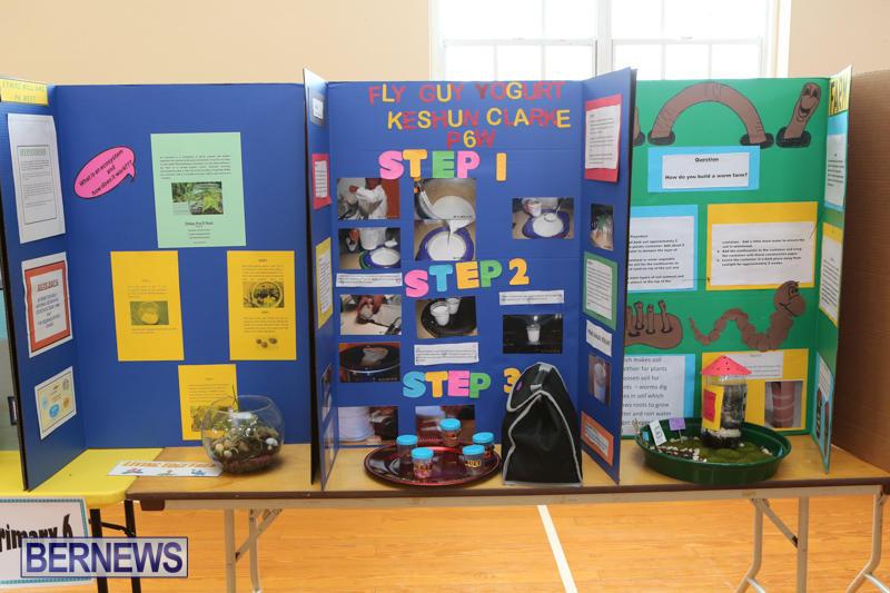 Purvis-Primary-Science-Fair-Bermuda-February-24-2016-87