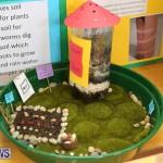 Purvis Primary Science Fair Bermuda, February 24 2016-88