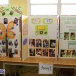 Purvis Primary Science Fair Bermuda, February 24 2016-9