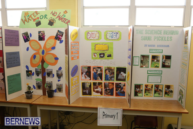 Purvis-Primary-Science-Fair-Bermuda-February-24-2016-9