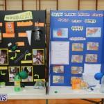Purvis Primary Science Fair Bermuda, February 24 2016-96
