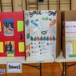 Purvis Primary Science Fair Bermuda, February 24 2016-99