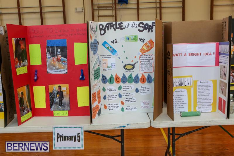 Purvis-Primary-Science-Fair-Bermuda-February-24-2016-99