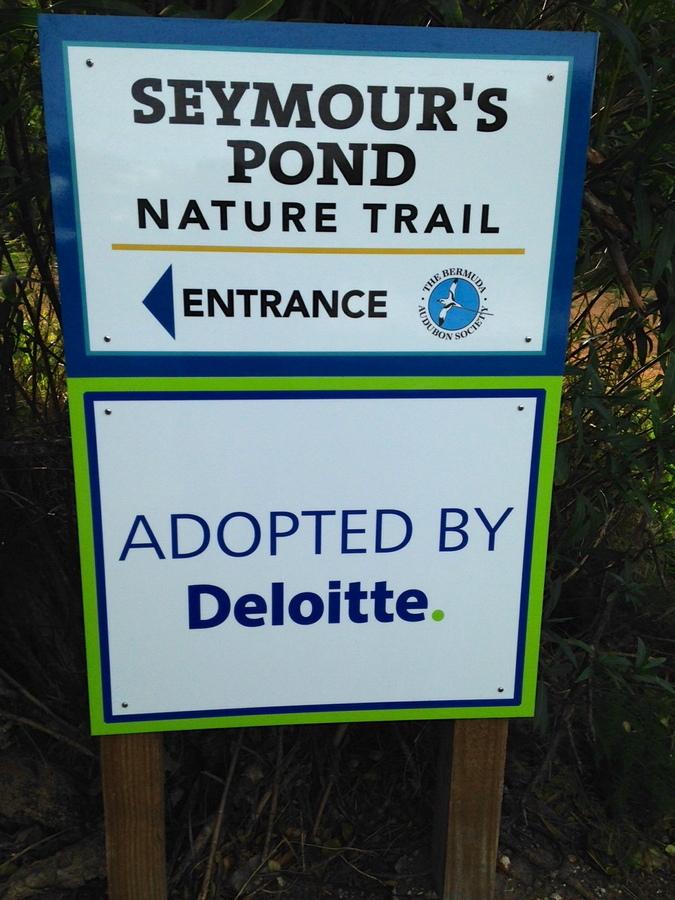 Seymour's Pond - Deloitte