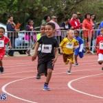 Telford Electric Magic Mile Bermuda, February 27 2016-161