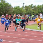 Telford Electric Magic Mile Bermuda, February 27 2016-191