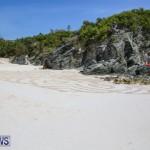 Beach Art Bermuda, March 19 2016-9