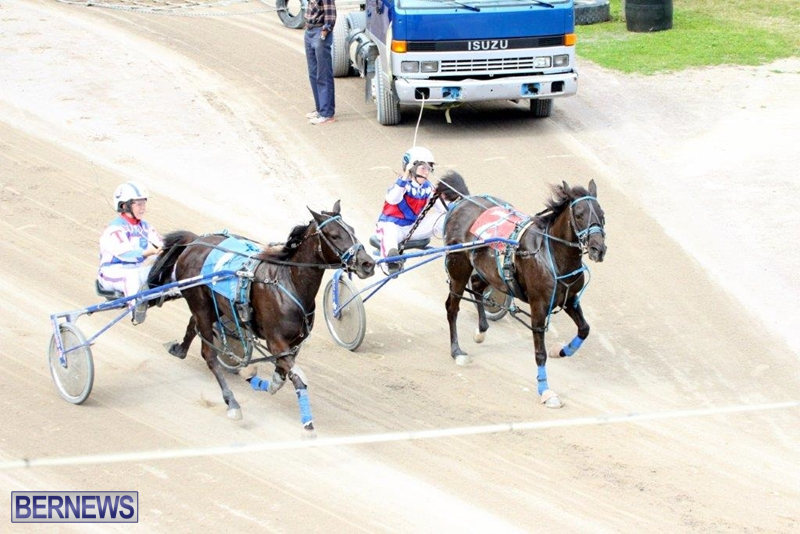 Bermuda-Harness-Pony-Racing-10-Mar-1