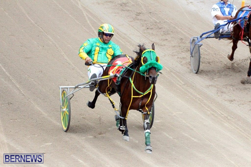 Bermuda-Harness-Pony-Racing-10-Mar-10