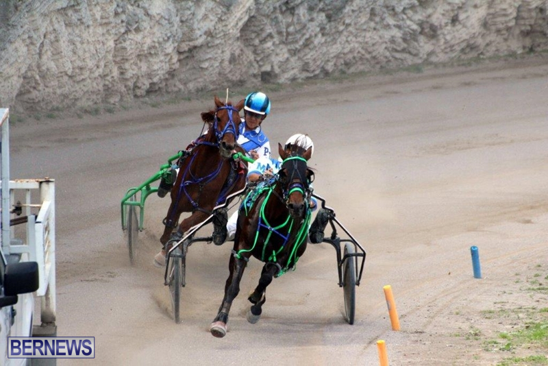 Bermuda-Harness-Pony-Racing-10-Mar-12