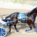 Bermuda Harness Pony Racing 10 Mar (15)