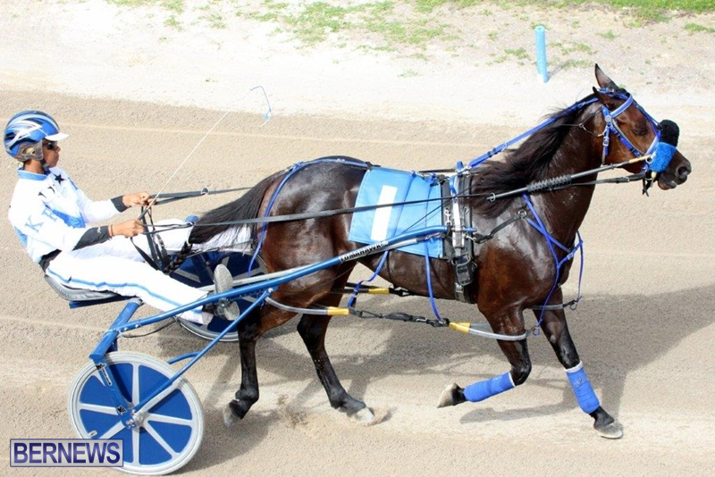 Bermuda-Harness-Pony-Racing-10-Mar-15