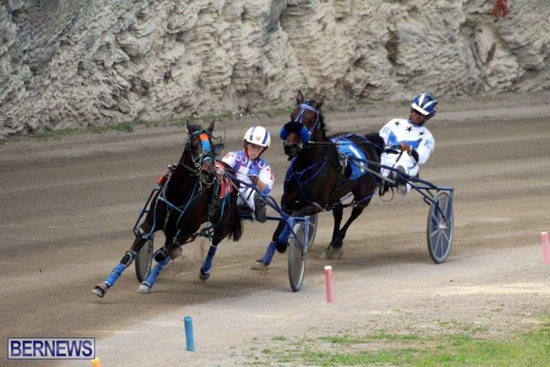 Bermuda-Harness-Pony-Racing-10-Mar-16