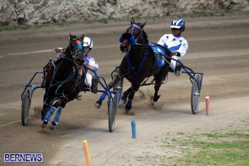 Bermuda-Harness-Pony-Racing-10-Mar-17