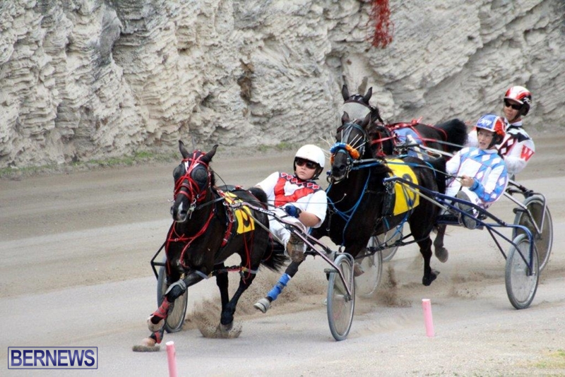 Bermuda-Harness-Pony-Racing-10-Mar-2