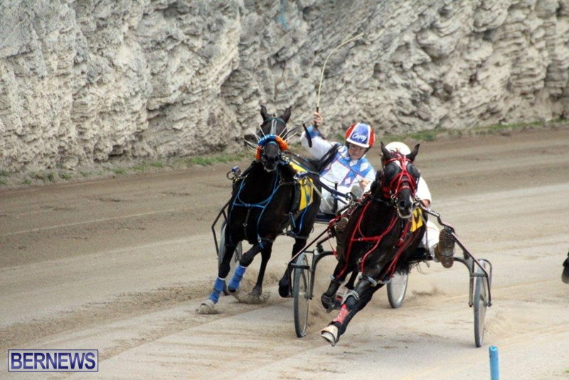 Bermuda-Harness-Pony-Racing-10-Mar-4