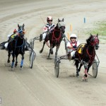 Bermuda Harness Pony Racing 10 Mar (5)