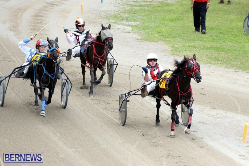 Bermuda-Harness-Pony-Racing-10-Mar-6