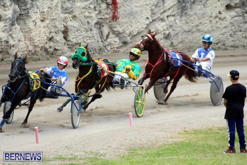 Bermuda-Harness-Pony-Racing-10-Mar-8