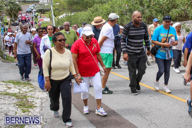 Bermuda-National-Trust-Palm-Sunday-Walk-March-20-2016-115