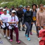 Bermuda National Trust Palm Sunday Walk, March 20 2016-124