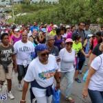 Bermuda National Trust Palm Sunday Walk, March 20 2016-133