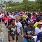 Bermuda National Trust Palm Sunday Walk, March 20 2016-134