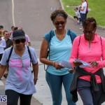 Bermuda National Trust Palm Sunday Walk, March 20 2016-230