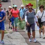 Bermuda National Trust Palm Sunday Walk, March 20 2016-279