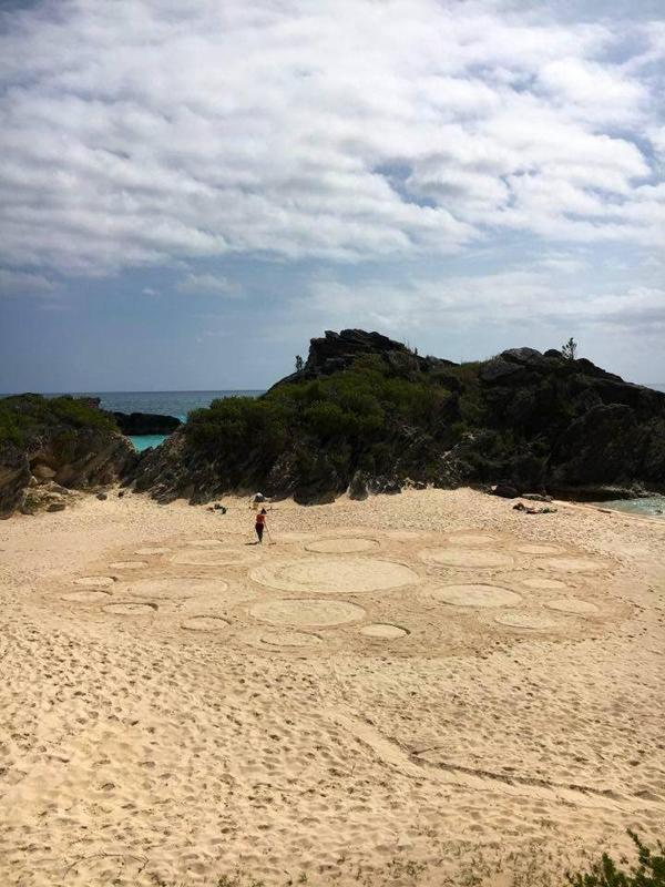 Bermuda Yoga