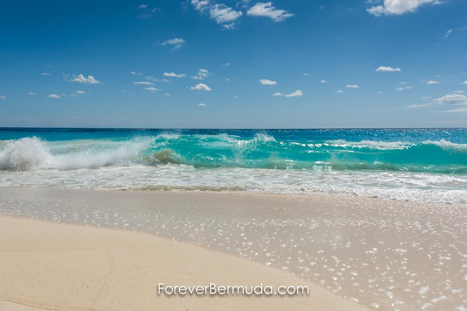 Happy Friday from the beaches of Bermuda in March