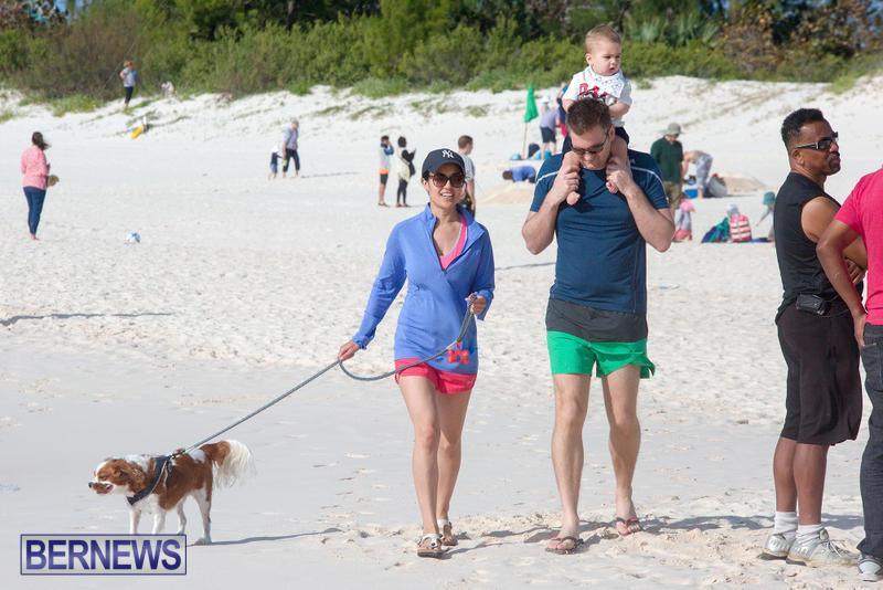 Horseshoe-Bay-Beach-Good-Friday-Bermuda-March-25-2016-14