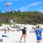 Horseshoe Bay Beach Good Friday Bermuda, March 25 2016 (32)