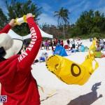 Horseshoe Bay Beach Good Friday Bermuda, March 25 2016 (49)